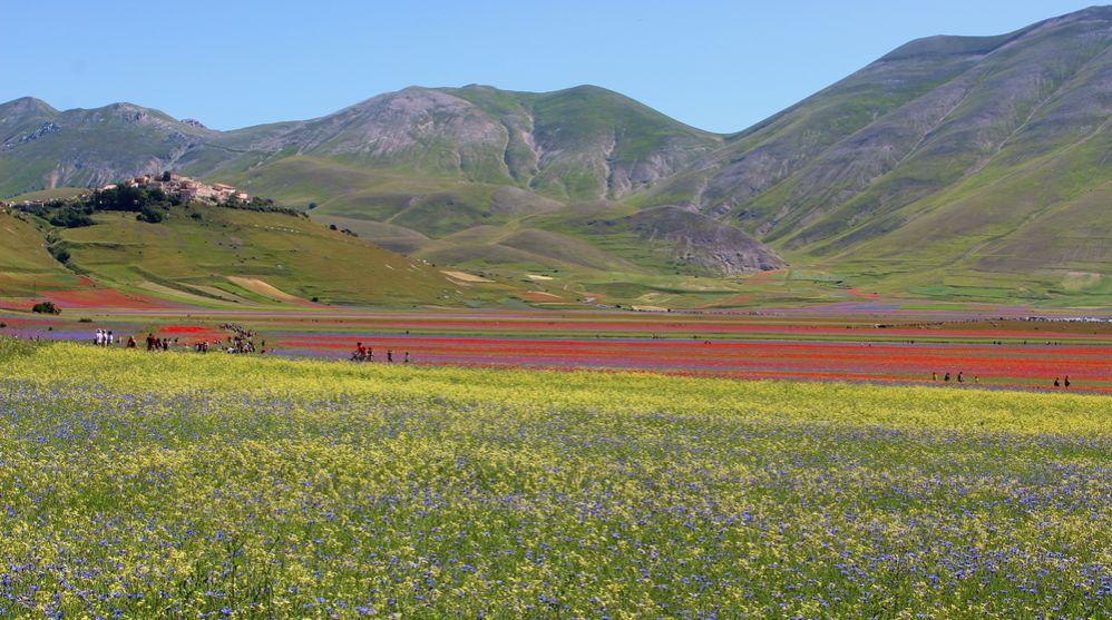 Vom Hügel aus beherrscht Castelluccio di Norcia die riesige Ebene Pian Grande