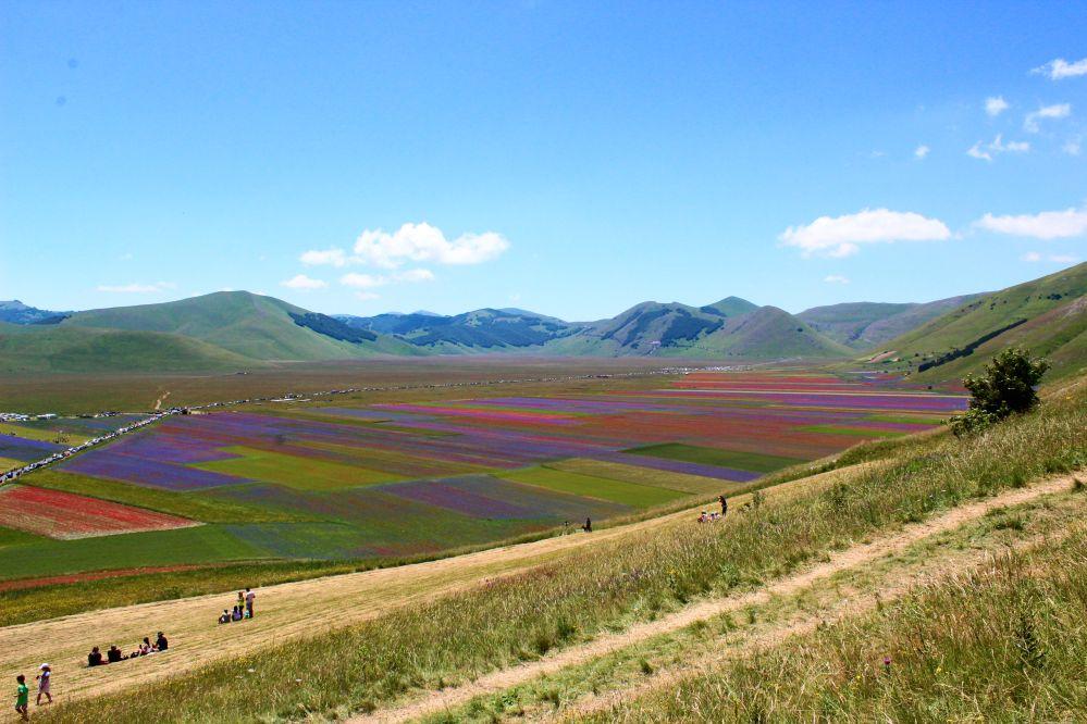 Die Fioritura di Castelluccio Blüte auf der großen Ebene Pian Grande
